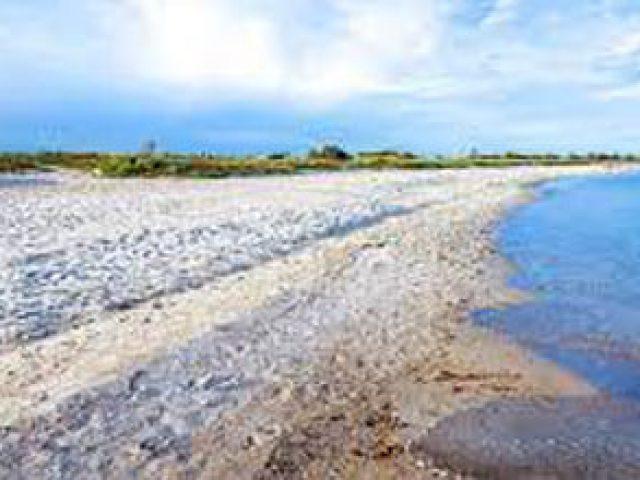 Drejby Strand